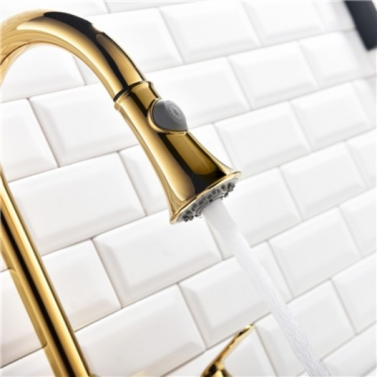 Gold Kitchen Faucet Double Hole Single Handle Kitchen Mixer Tap with Pull Out Spray